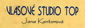 logo/avatar, Vlasové Studio TOP